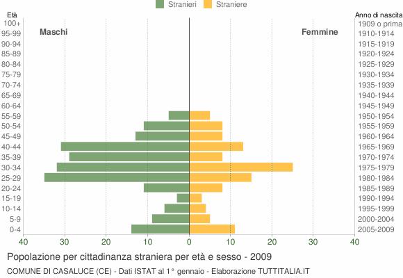 Grafico cittadini stranieri - Casaluce 2009