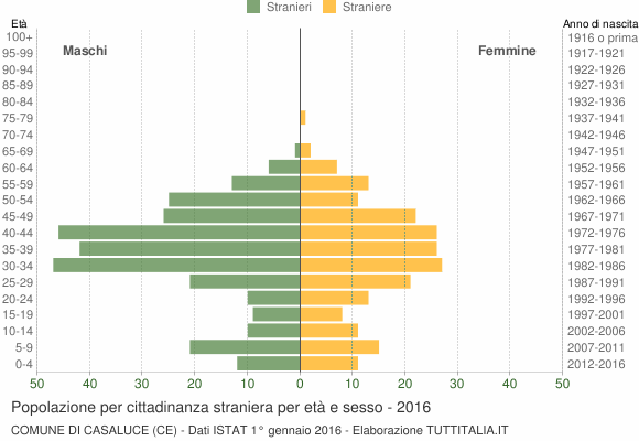 Grafico cittadini stranieri - Casaluce 2016