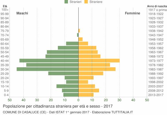Grafico cittadini stranieri - Casaluce 2017