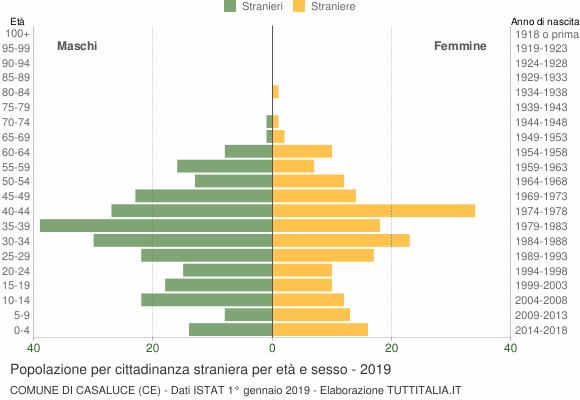 Grafico cittadini stranieri - Casaluce 2019