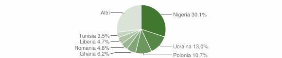 Grafico cittadinanza stranieri - Castel Volturno 2009