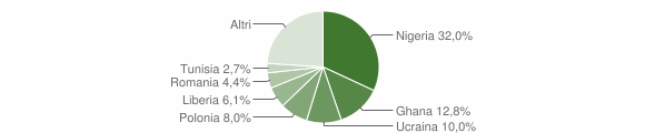 Grafico cittadinanza stranieri - Castel Volturno 2012