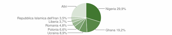 Grafico cittadinanza stranieri - Castel Volturno 2017