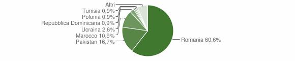 Grafico cittadinanza stranieri - Bracigliano 2018