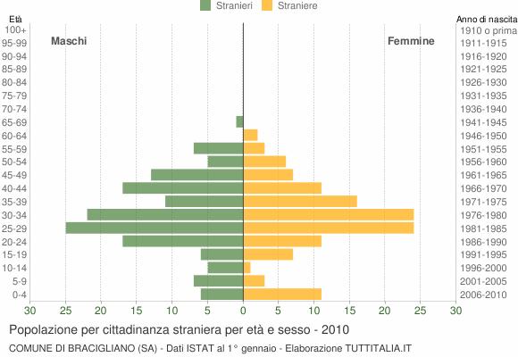 Grafico cittadini stranieri - Bracigliano 2010