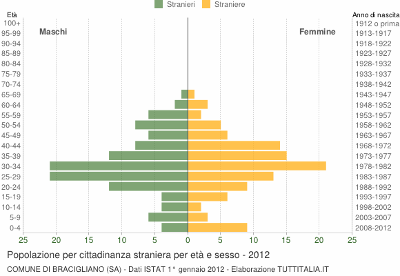 Grafico cittadini stranieri - Bracigliano 2012