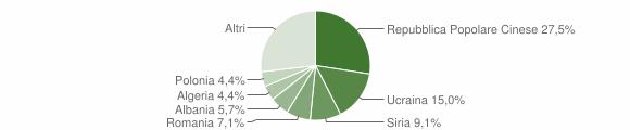 Grafico cittadinanza stranieri - Solofra 2007