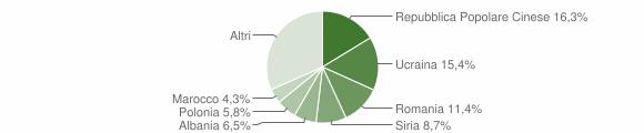 Grafico cittadinanza stranieri - Solofra 2009