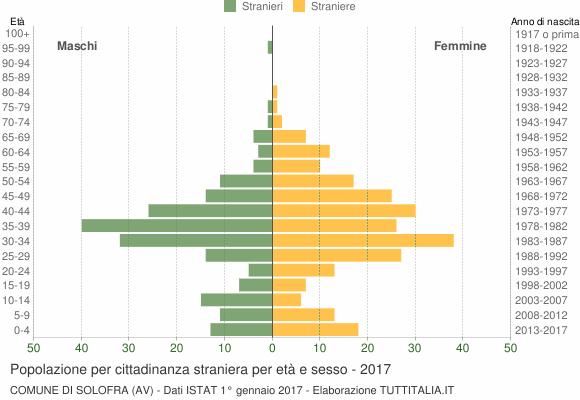 Grafico cittadini stranieri - Solofra 2017
