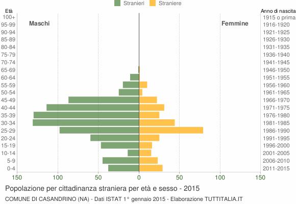 Grafico cittadini stranieri - Casandrino 2015