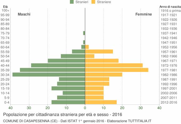 Grafico cittadini stranieri - Casapesenna 2016