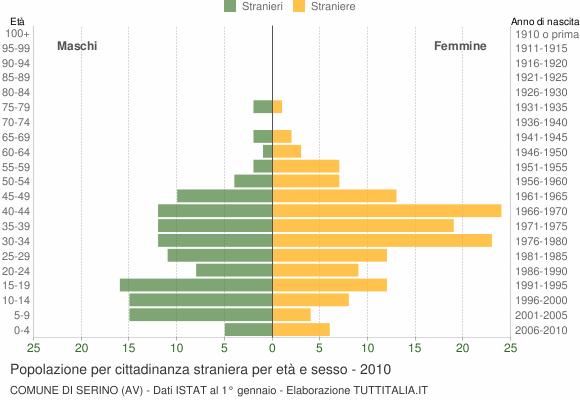 Grafico cittadini stranieri - Serino 2010