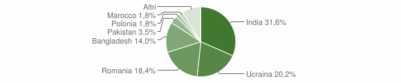 Grafico cittadinanza stranieri - Domicella 2018