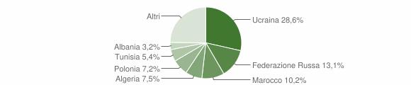 Grafico cittadinanza stranieri - Marano di Napoli 2009