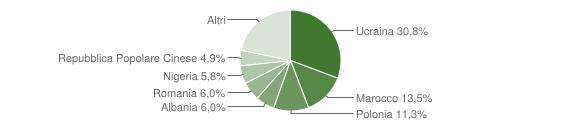 Grafico cittadinanza stranieri - Teverola 2010