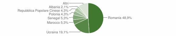 Grafico cittadinanza stranieri - Calvanico 2009