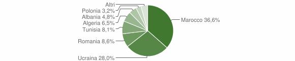 Grafico cittadinanza stranieri - Cesa 2009