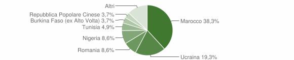 Grafico cittadinanza stranieri - Cesa 2019