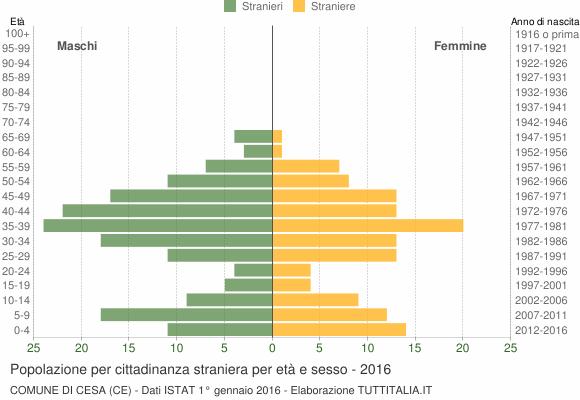 Grafico cittadini stranieri - Cesa 2016