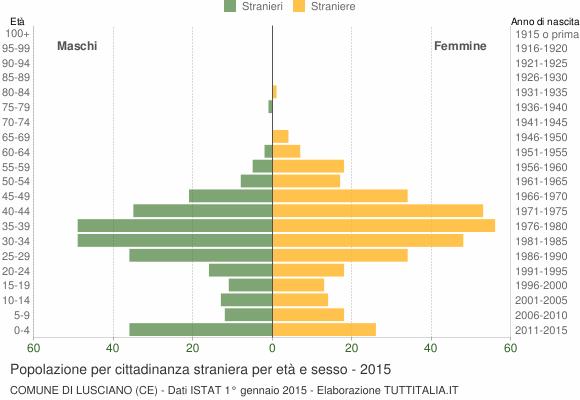 Grafico cittadini stranieri - Lusciano 2015