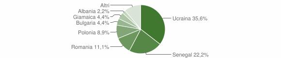 Grafico cittadinanza stranieri - Giffoni Sei Casali 2007