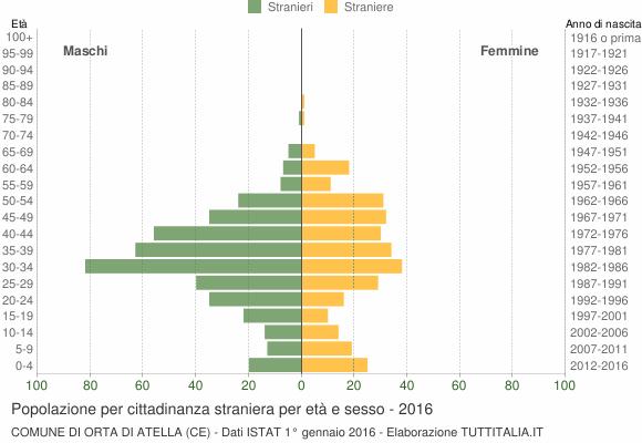 Grafico cittadini stranieri - Orta di Atella 2016
