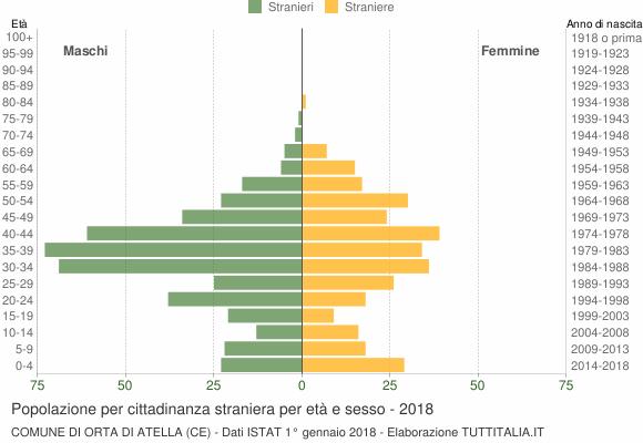 Grafico cittadini stranieri - Orta di Atella 2018