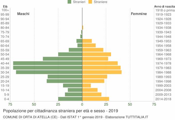 Grafico cittadini stranieri - Orta di Atella 2019