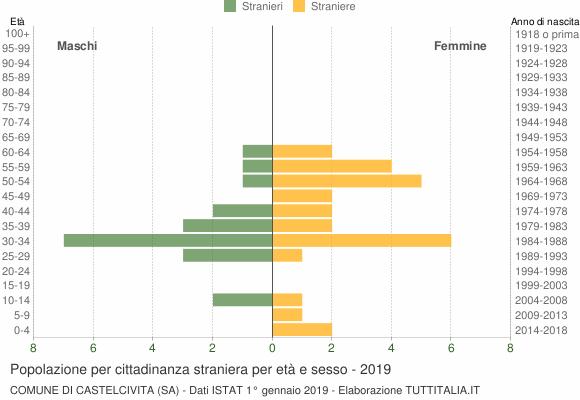 Grafico cittadini stranieri - Castelcivita 2019