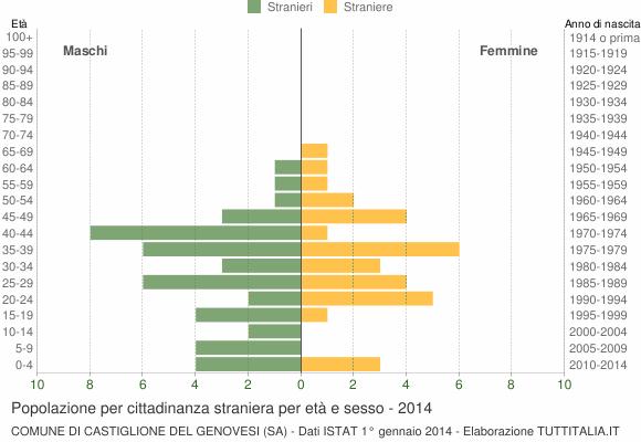 Grafico cittadini stranieri - Castiglione del Genovesi 2014