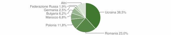 Grafico cittadinanza stranieri - Grottaminarda 2010