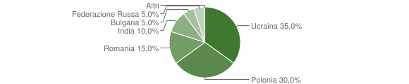 Grafico cittadinanza stranieri - Volturara Irpina 2006