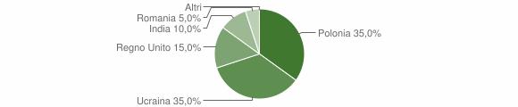 Grafico cittadinanza stranieri - Volturara Irpina 2007