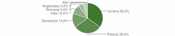 Grafico cittadinanza stranieri - Volturara Irpina 2008