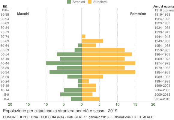 Grafico cittadini stranieri - Pollena Trocchia 2019