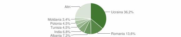 Grafico cittadinanza stranieri - Volla 2009