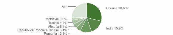 Grafico cittadinanza stranieri - Volla 2019