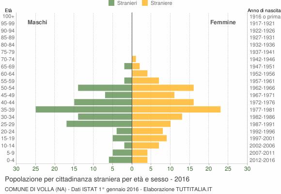Grafico cittadini stranieri - Volla 2016