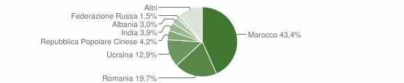 Grafico cittadinanza stranieri - Bellizzi 2019