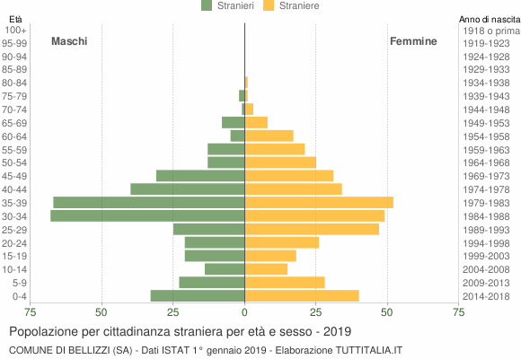 Grafico cittadini stranieri - Bellizzi 2019