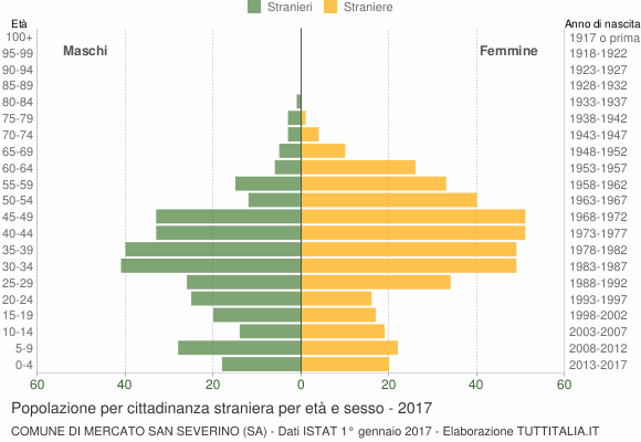 Grafico cittadini stranieri - Mercato San Severino 2017
