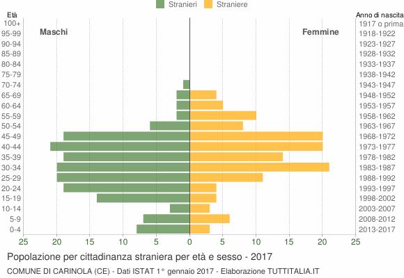 Grafico cittadini stranieri - Carinola 2017