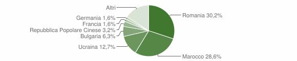 Grafico cittadinanza stranieri - Lioni 2010