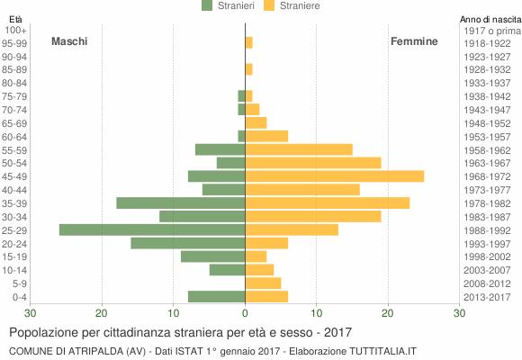 Grafico cittadini stranieri - Atripalda 2017