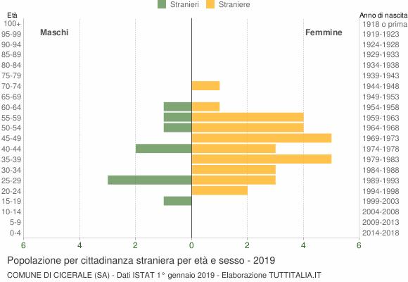 Grafico cittadini stranieri - Cicerale 2019