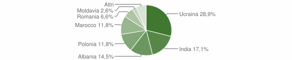 Grafico cittadinanza stranieri - San Tammaro 2013