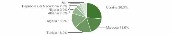 Grafico cittadinanza stranieri - Trentola Ducenta 2004