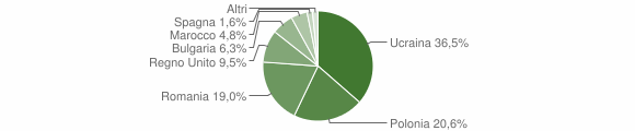 Grafico cittadinanza stranieri - Ospedaletto d'Alpinolo 2011