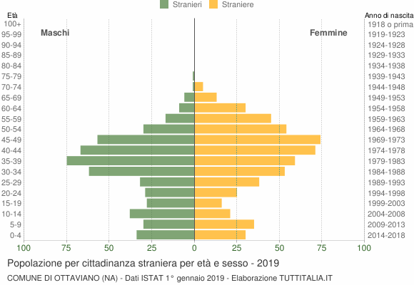 Grafico cittadini stranieri - Ottaviano 2019