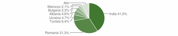 Grafico cittadinanza stranieri - Cancello ed Arnone 2019